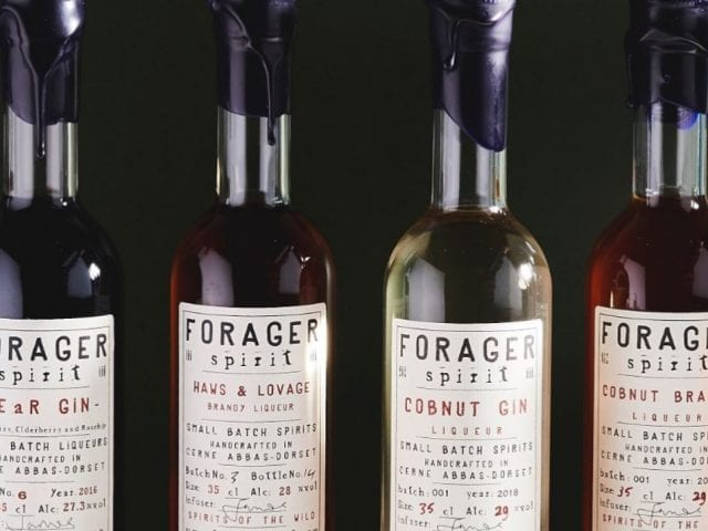 bottles of forager spirit in a line
