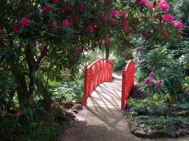 a red bridge going through a garden