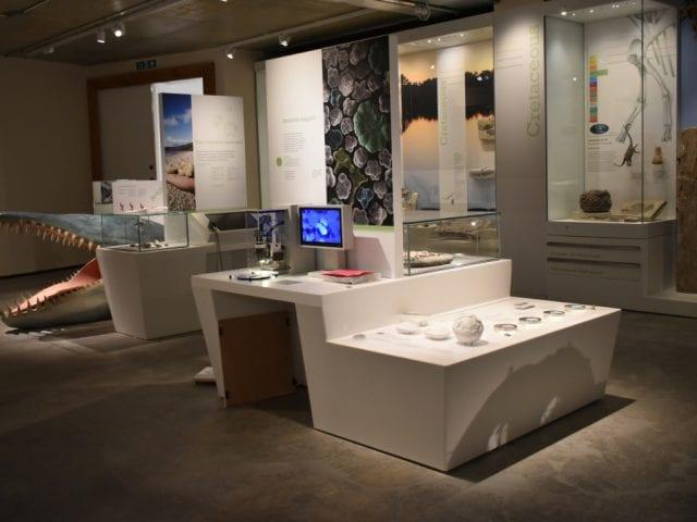 Dorset museum exhibits